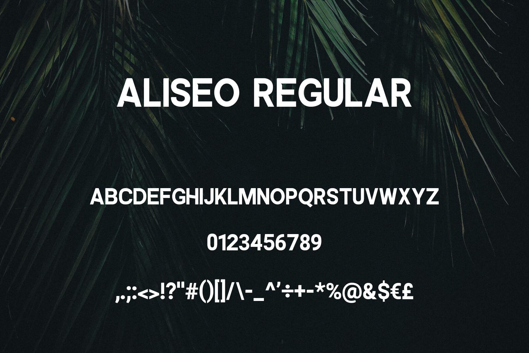 Aliseo Font Family - Sans Serif example image 3