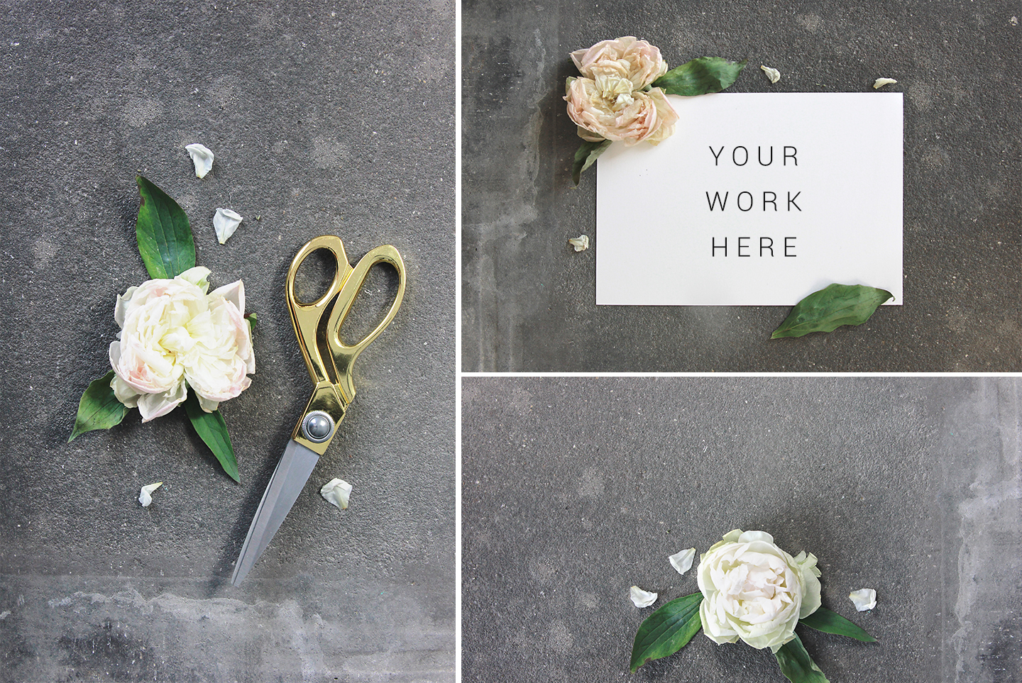 White & gray floral mockup, flower stock images example image 3