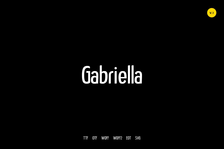 Gabriella Modern Typeface WebFonts example image 1