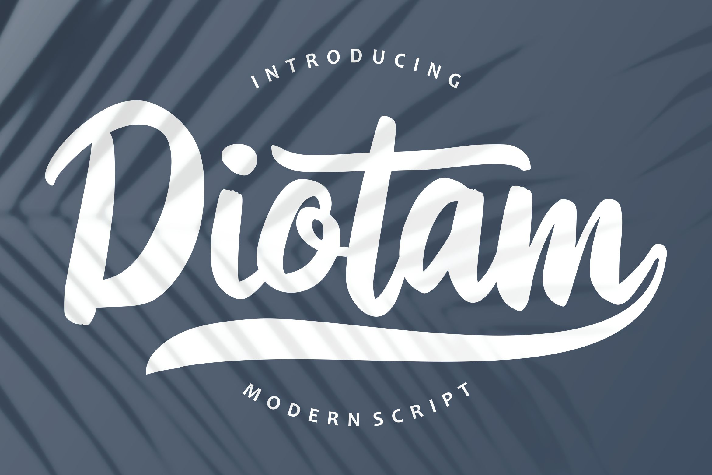 Diotam | Modern Script Font example image 1