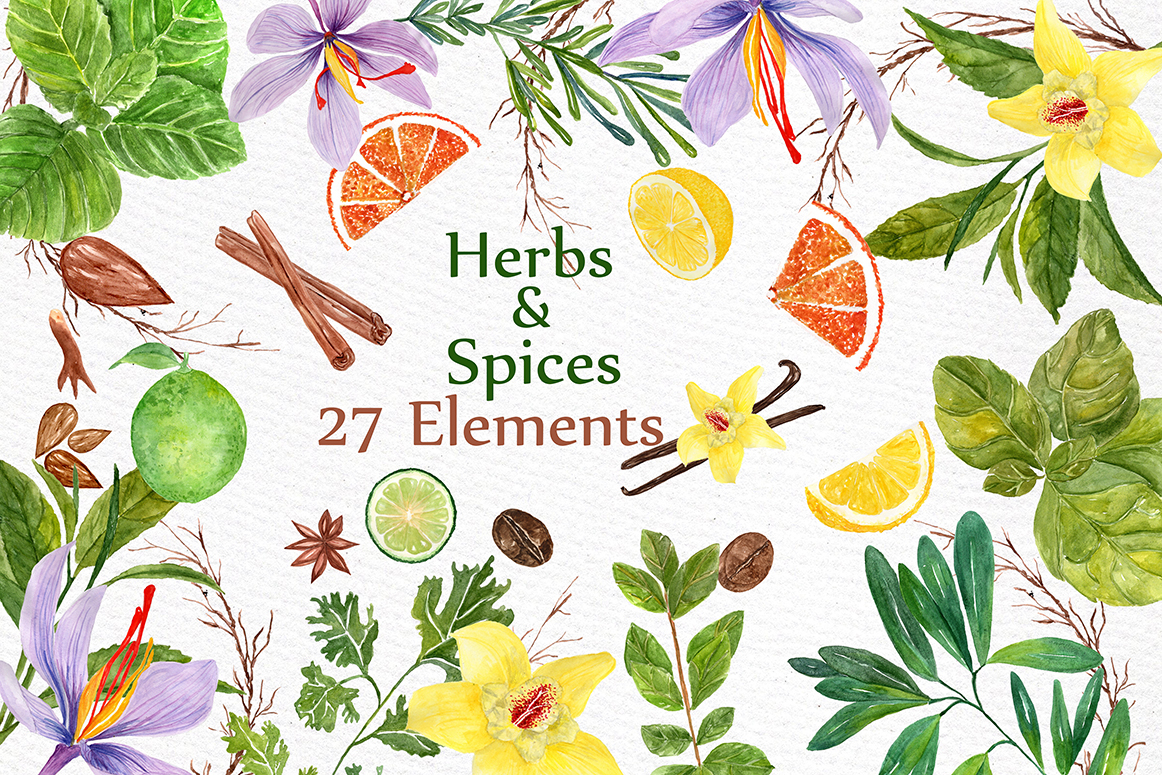 Watercolor Herbs and spices clipart example image 1