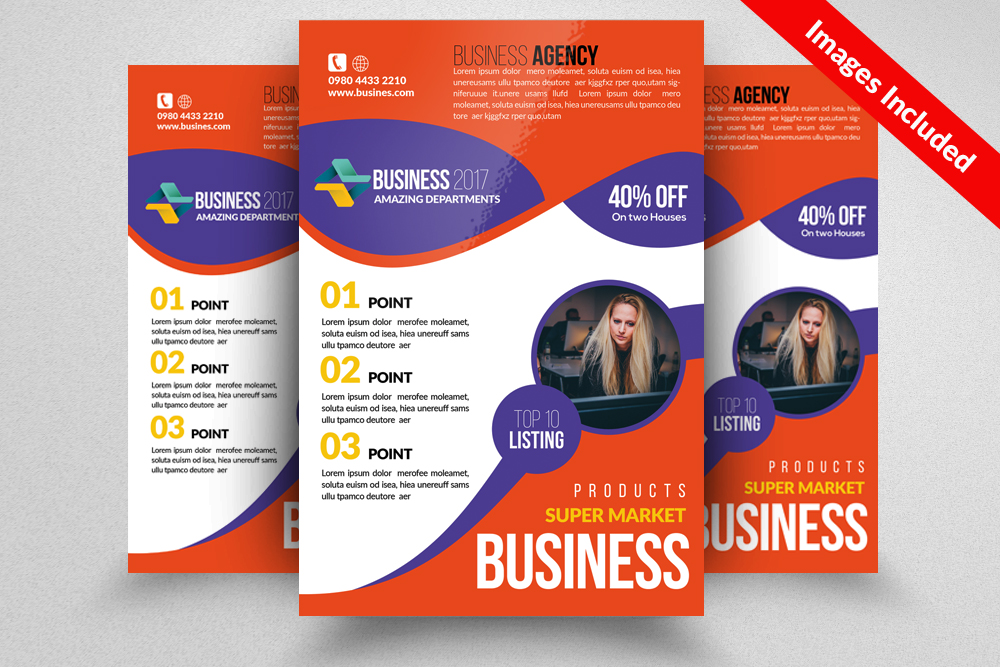 Accounting Audit Flyer Templates example image 1