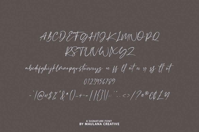 Blackseas Signature Font example image 10