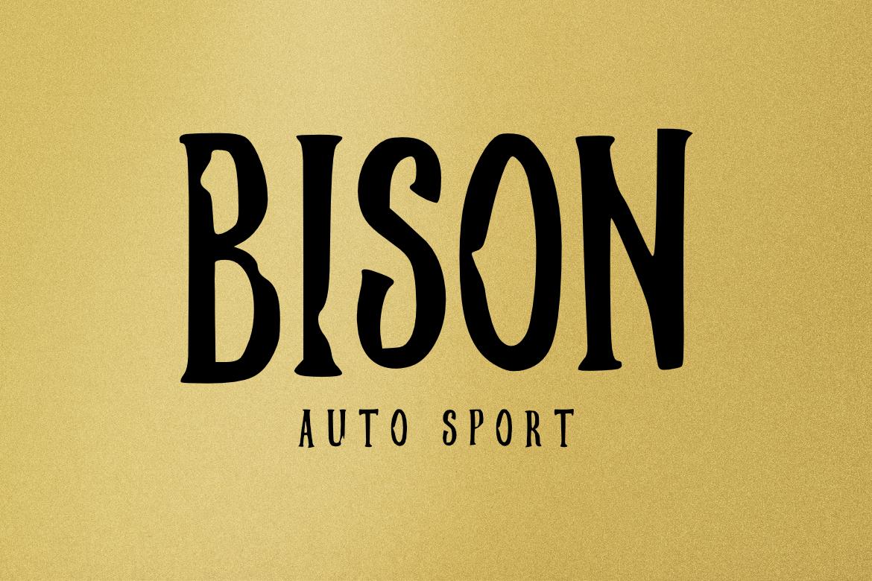 Brush Font Bundle example image 8