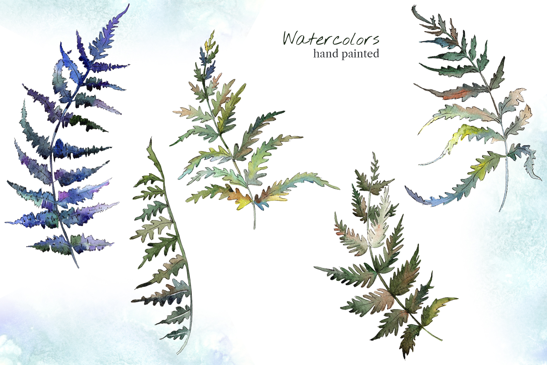Fern leaf clipart watercolor png example image 2