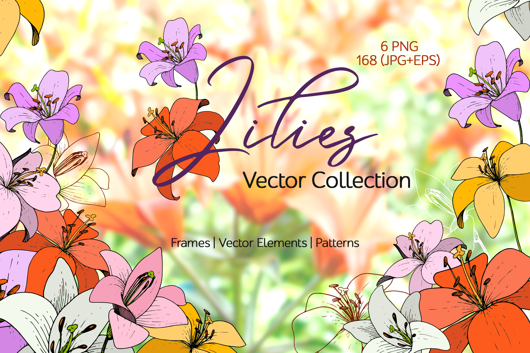 Lilies Vector Collection example image 1