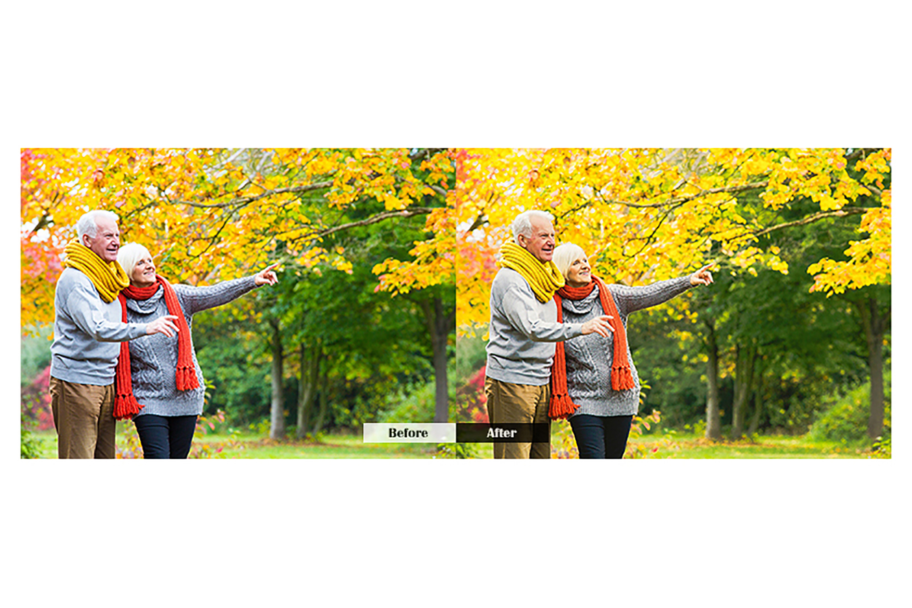 Autumn Lightroom Mobile Presets example image 3