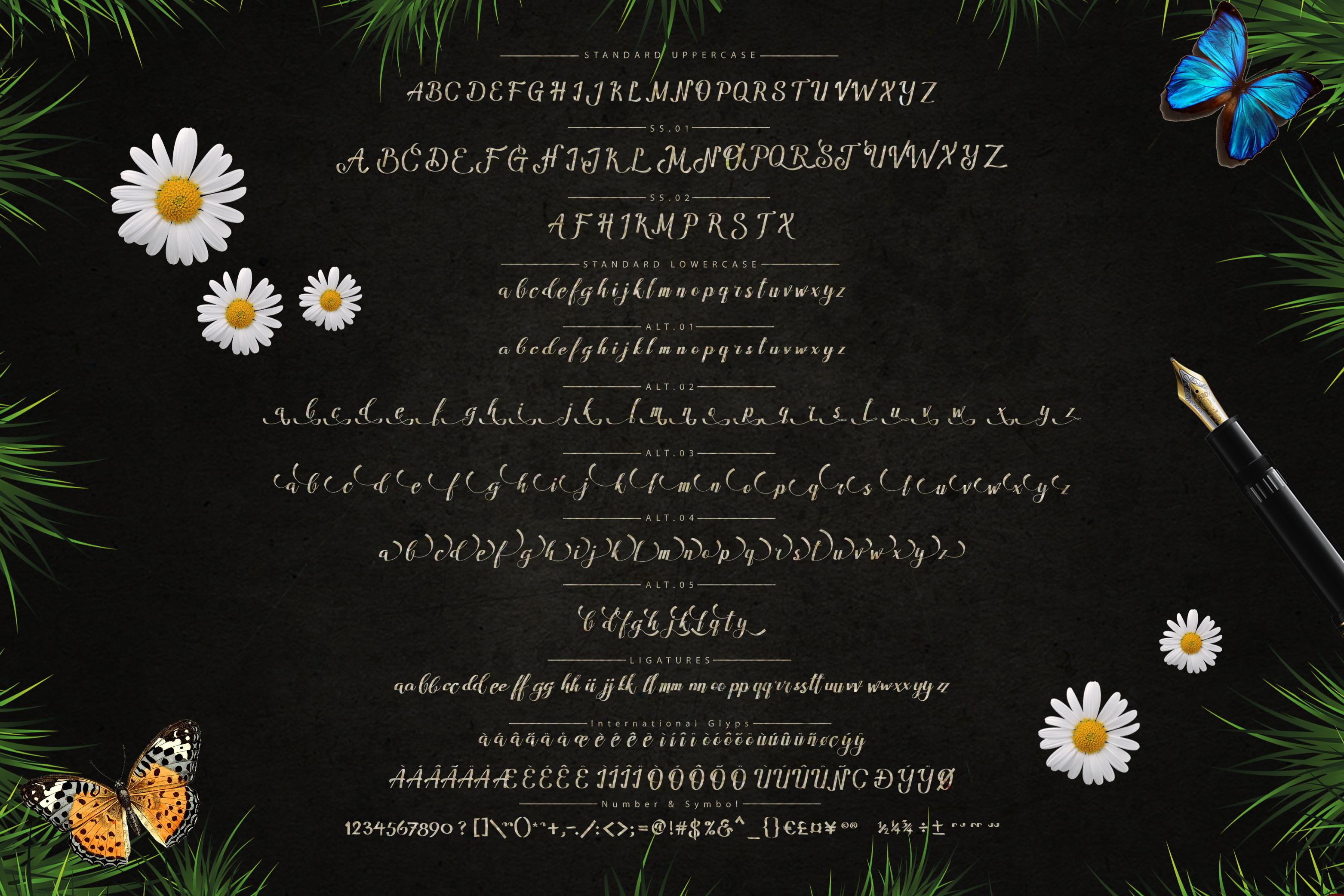 Amandella Script example image 3