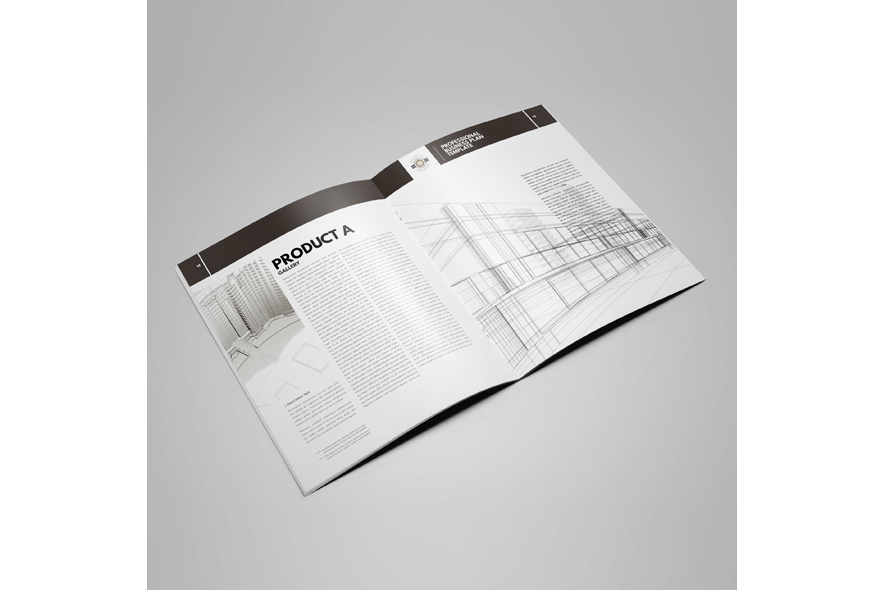 Professional Startup Plan Template US Letter example image 3