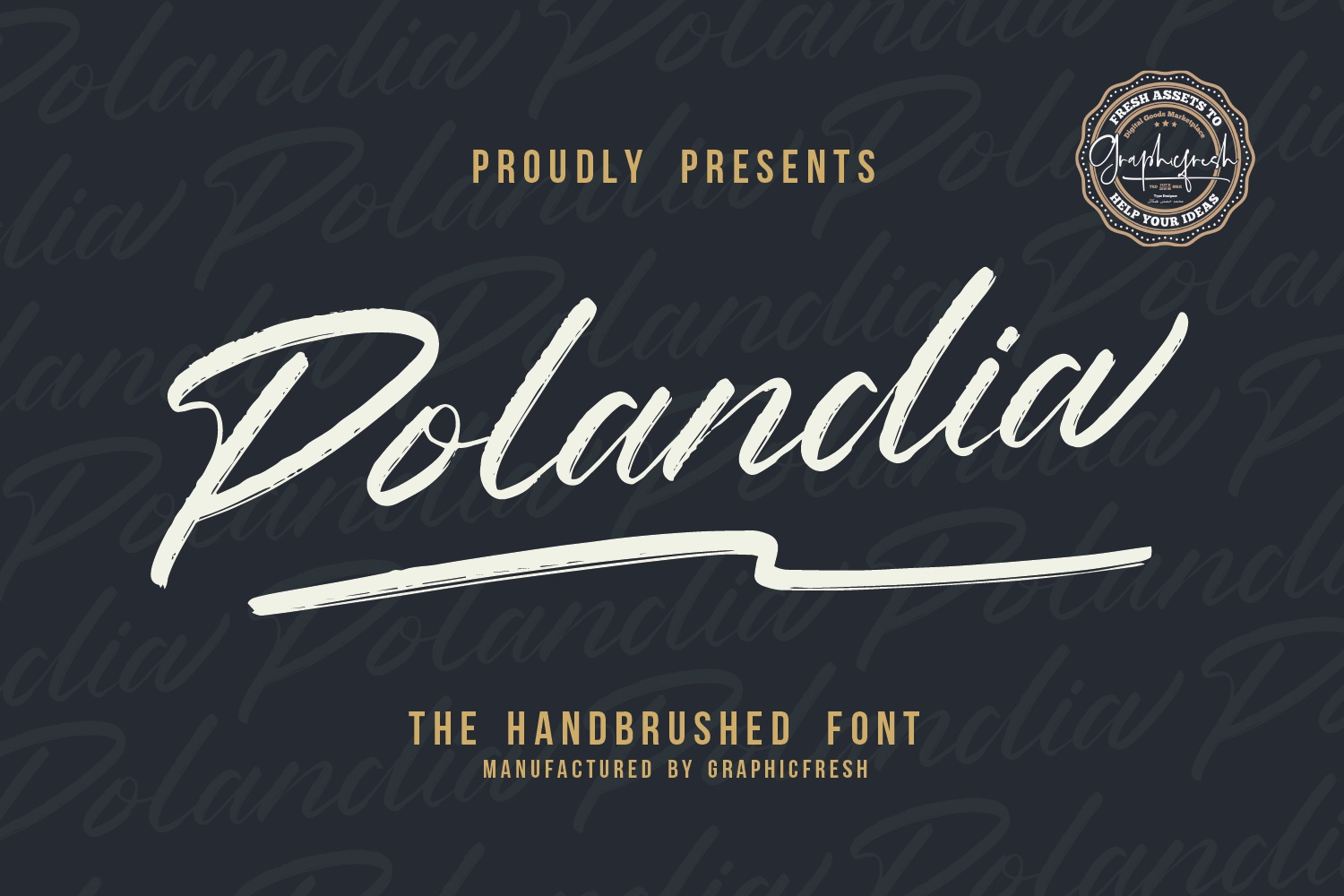 Polandia - The Handbrushed Font example image 1