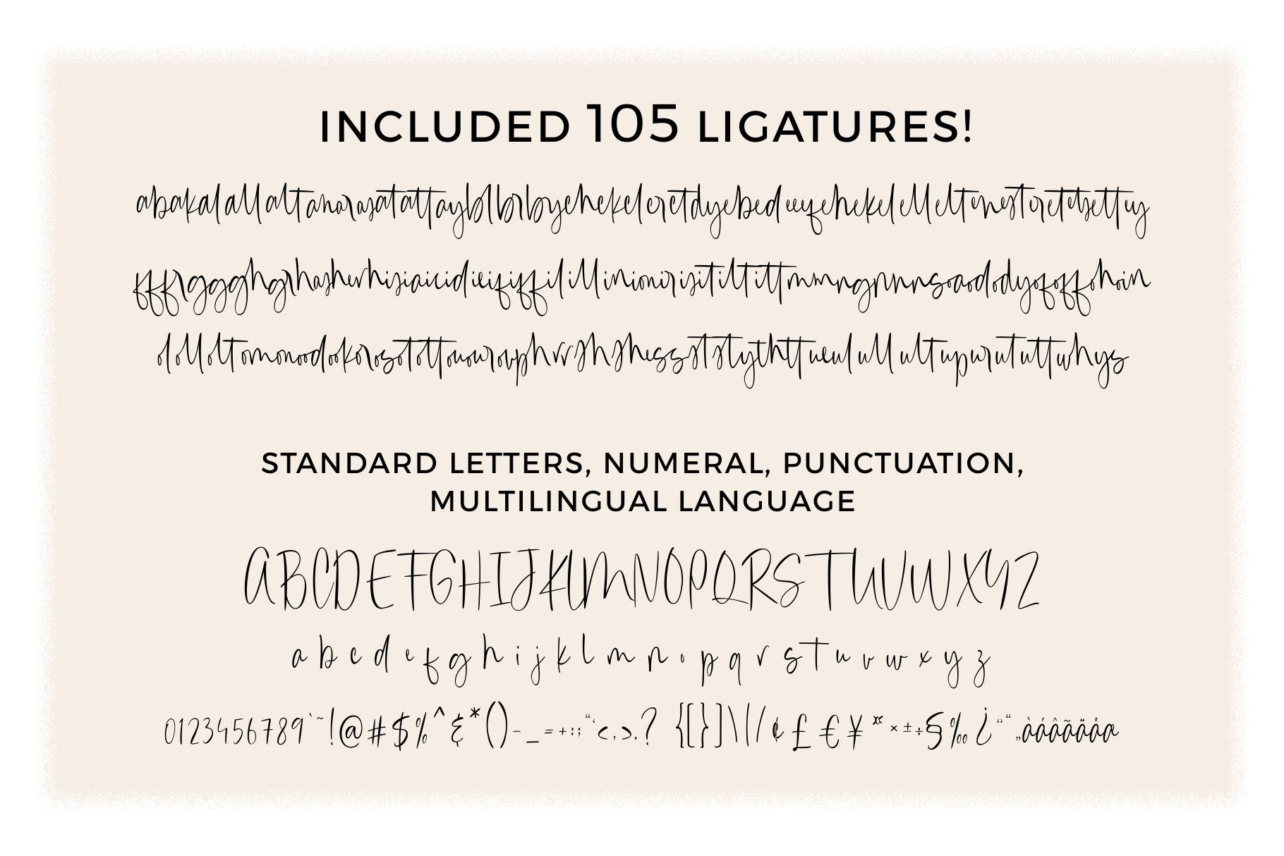 Canari   Signature Font example image 12