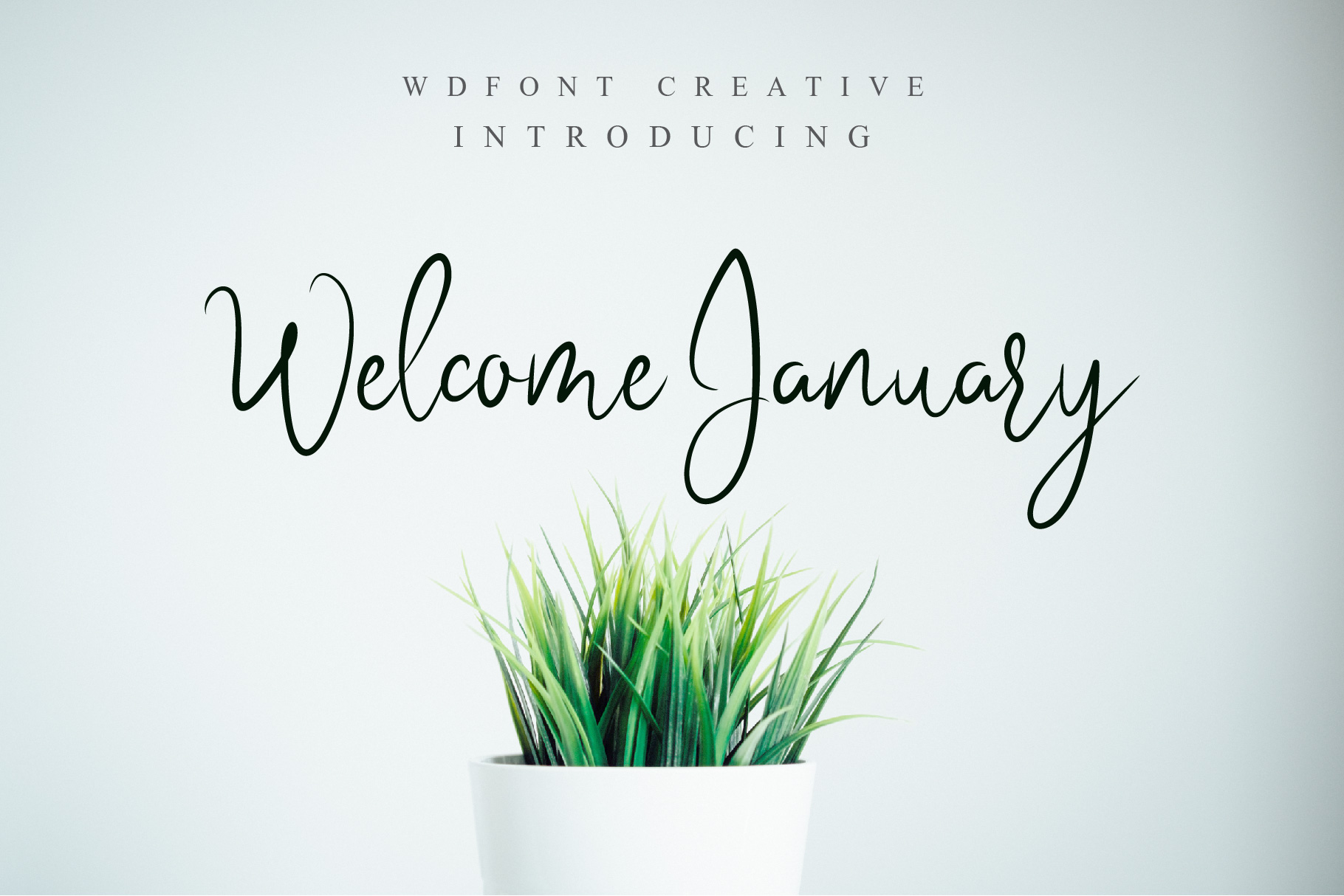 Welcome January example image 1