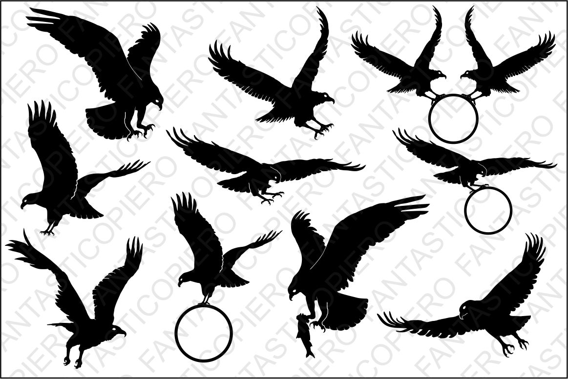 Bald Eagle SVG files for Silhouette and Cricut. example image 1