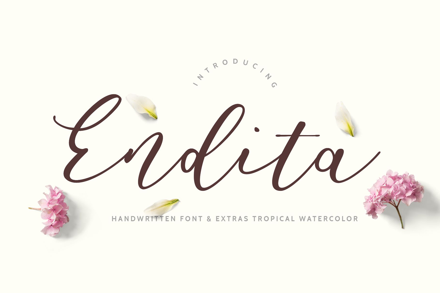 Endita Handwritten Font and Extras example image 1