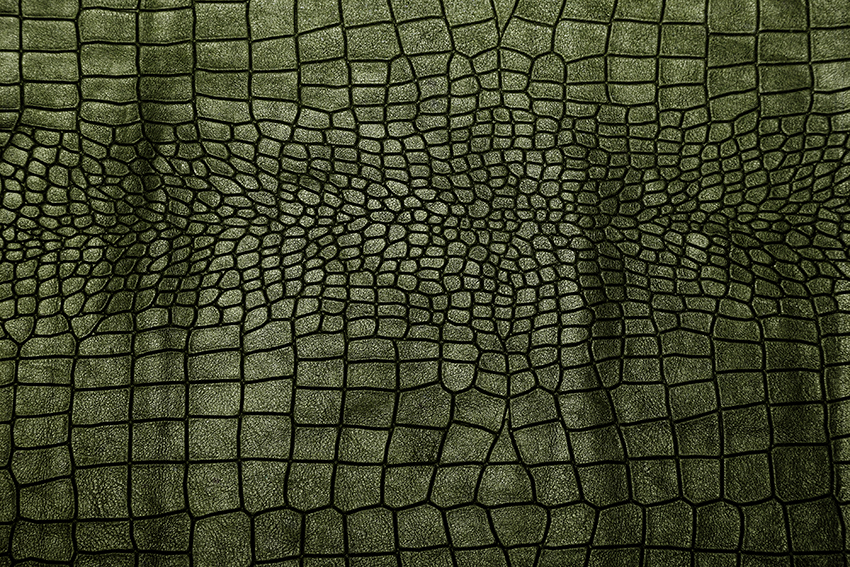 Leather Textures example image 6