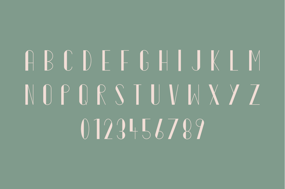 Ornate Typeface example image 3