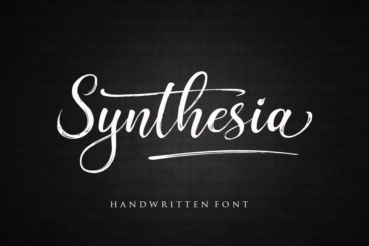 The Script Font Bundle example image 28