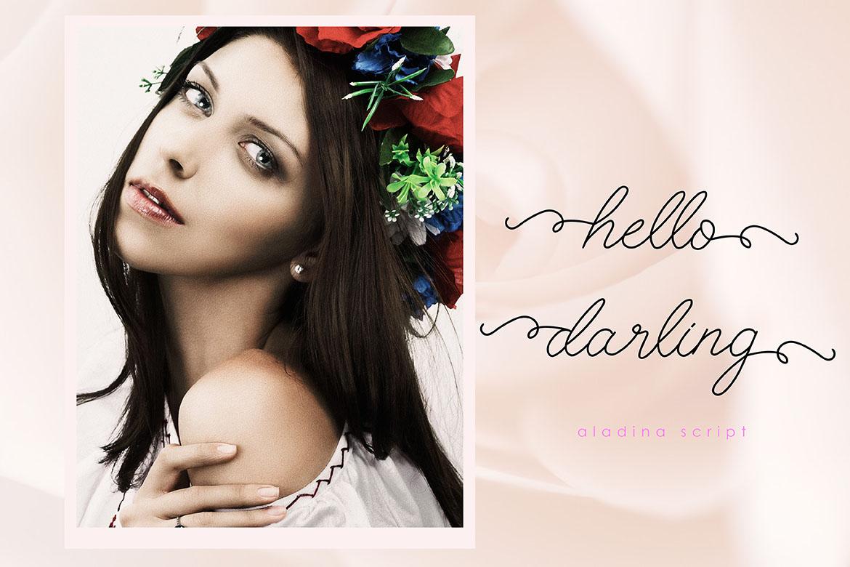ALADINA example image 4