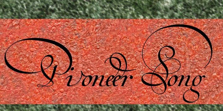 Van den Velde Script PRO example image 12