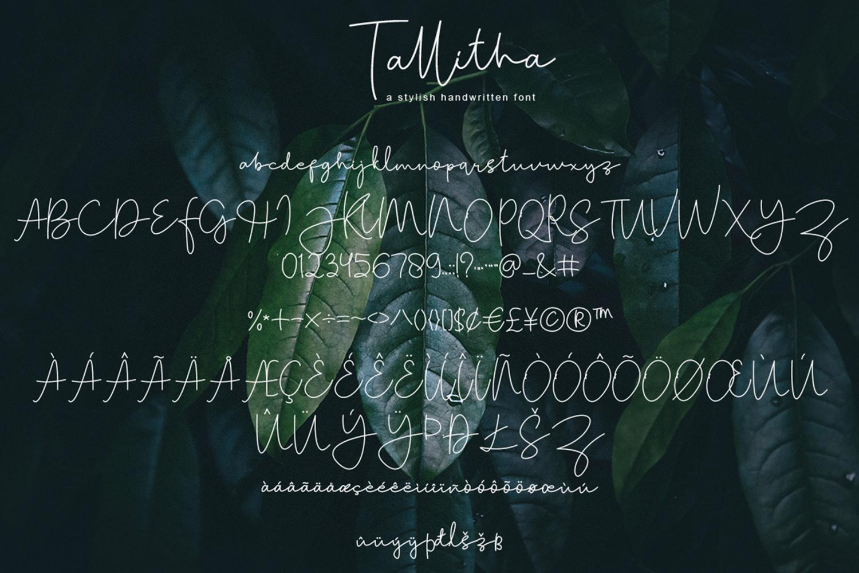 Tallitha a stylish handwritten font example image 9