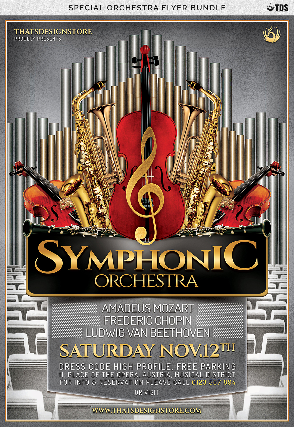 Special Orchestra Flyer Bundle example image 7