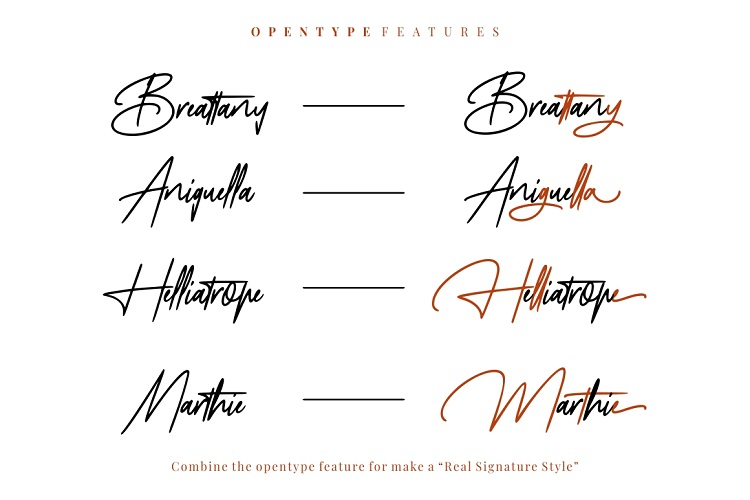 Mayestica - Luxury Signature Font example image 8