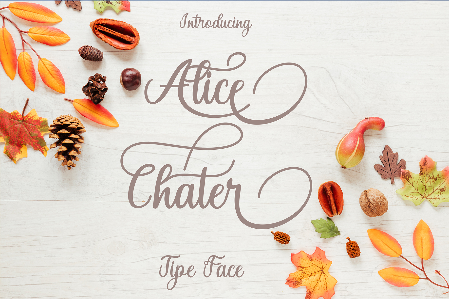 Alice Chater example image 2