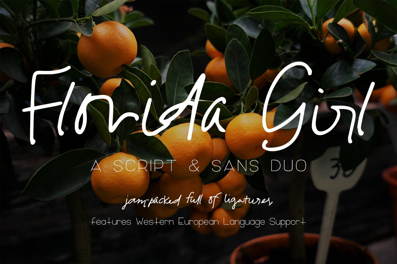 Florida Girl Script & Sans example image 1