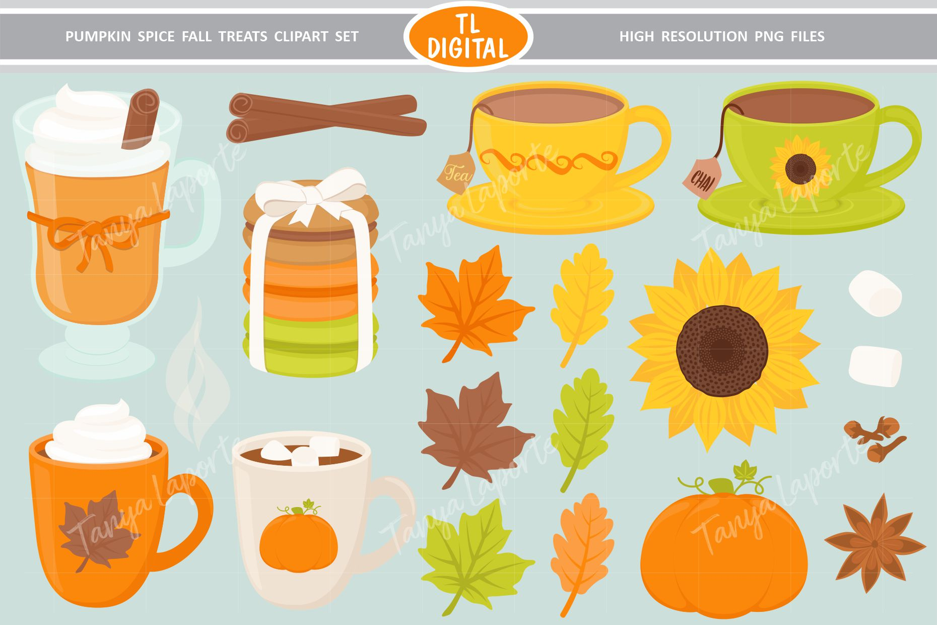 Pumpkin Spice Fall Treats Clipart - 32 PNG Graphics example image 1