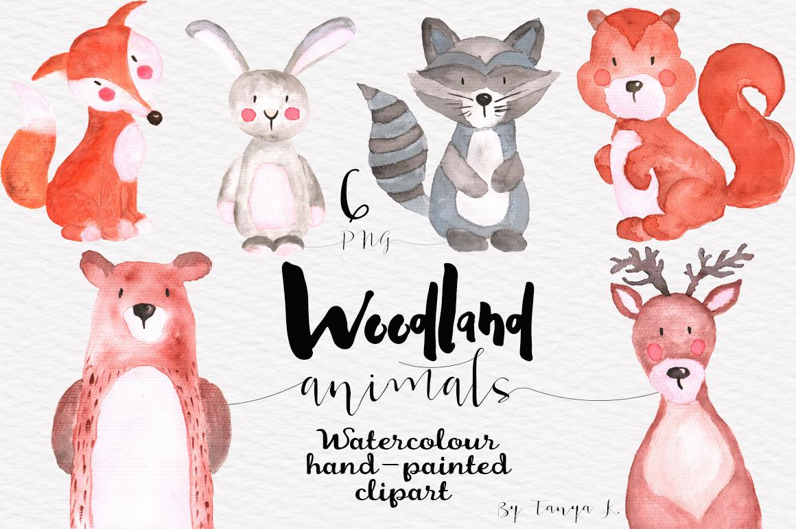 Woodland Animals Watercolor Set example image 1