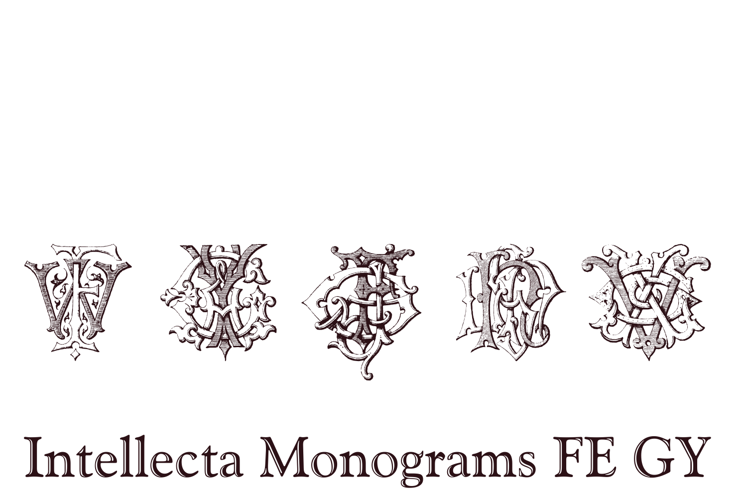 Intellecta Monograms FE GY example image 8