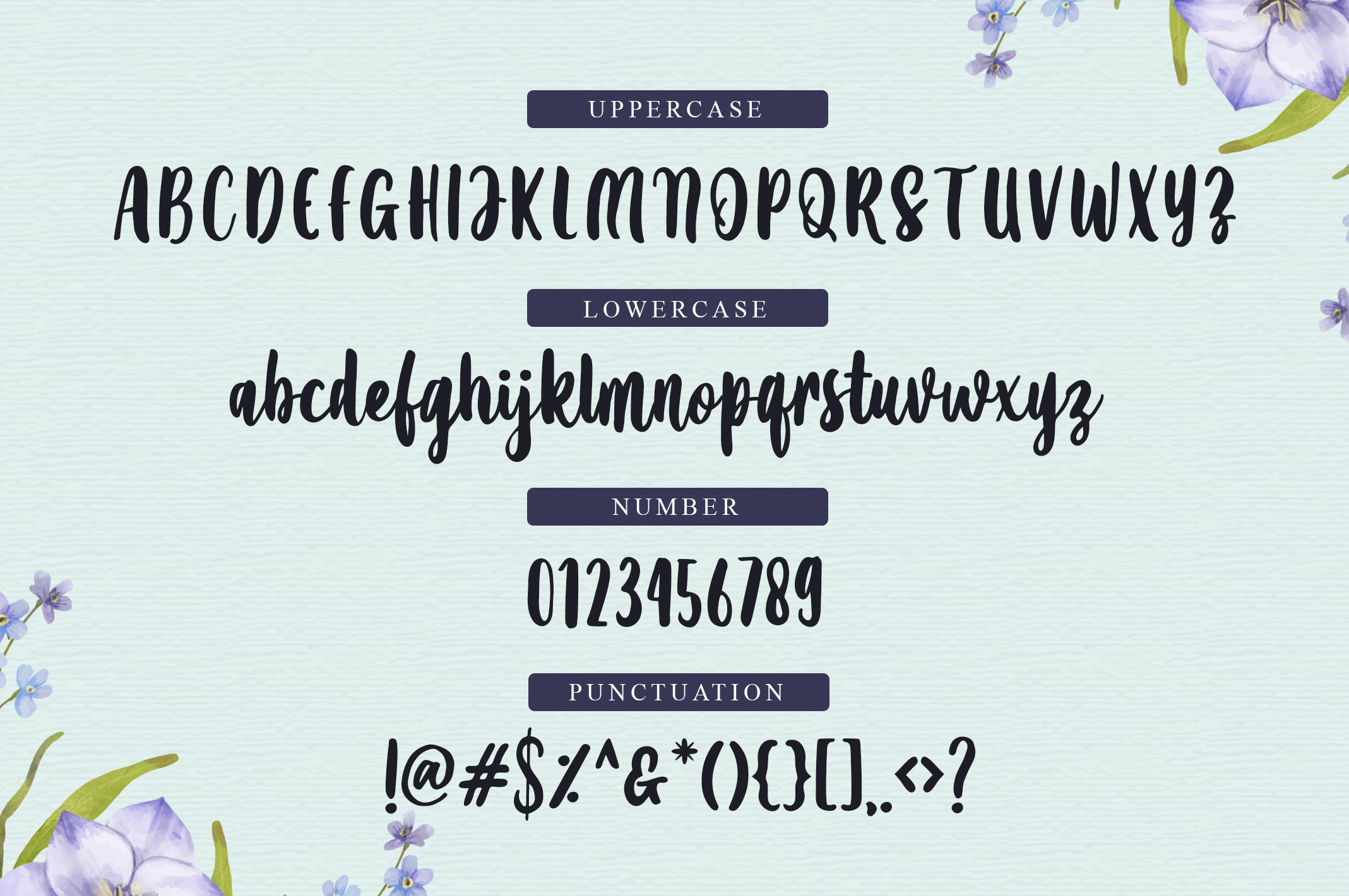 Amanise | Handwritten Script Font example image 2