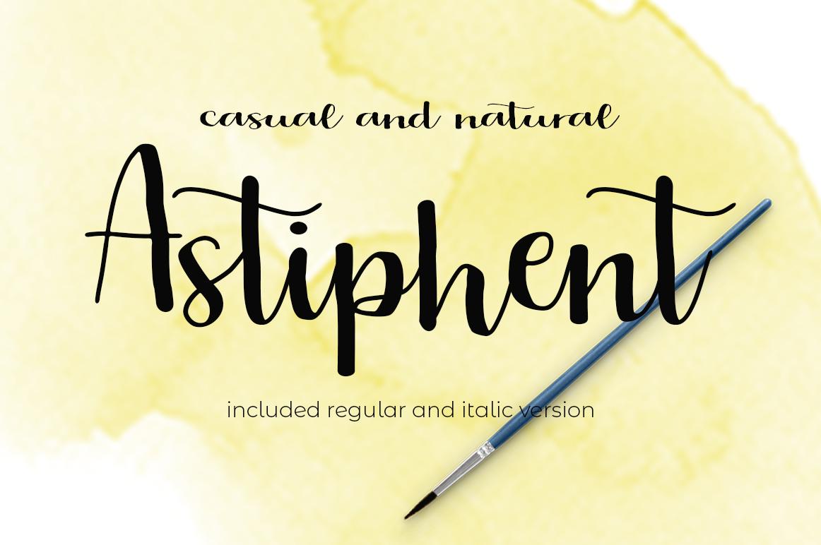 The Script Font Bundle example image 9