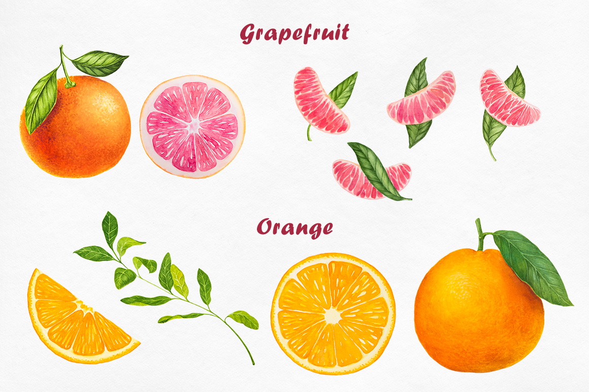 Watercolor Fruits collection example image 7
