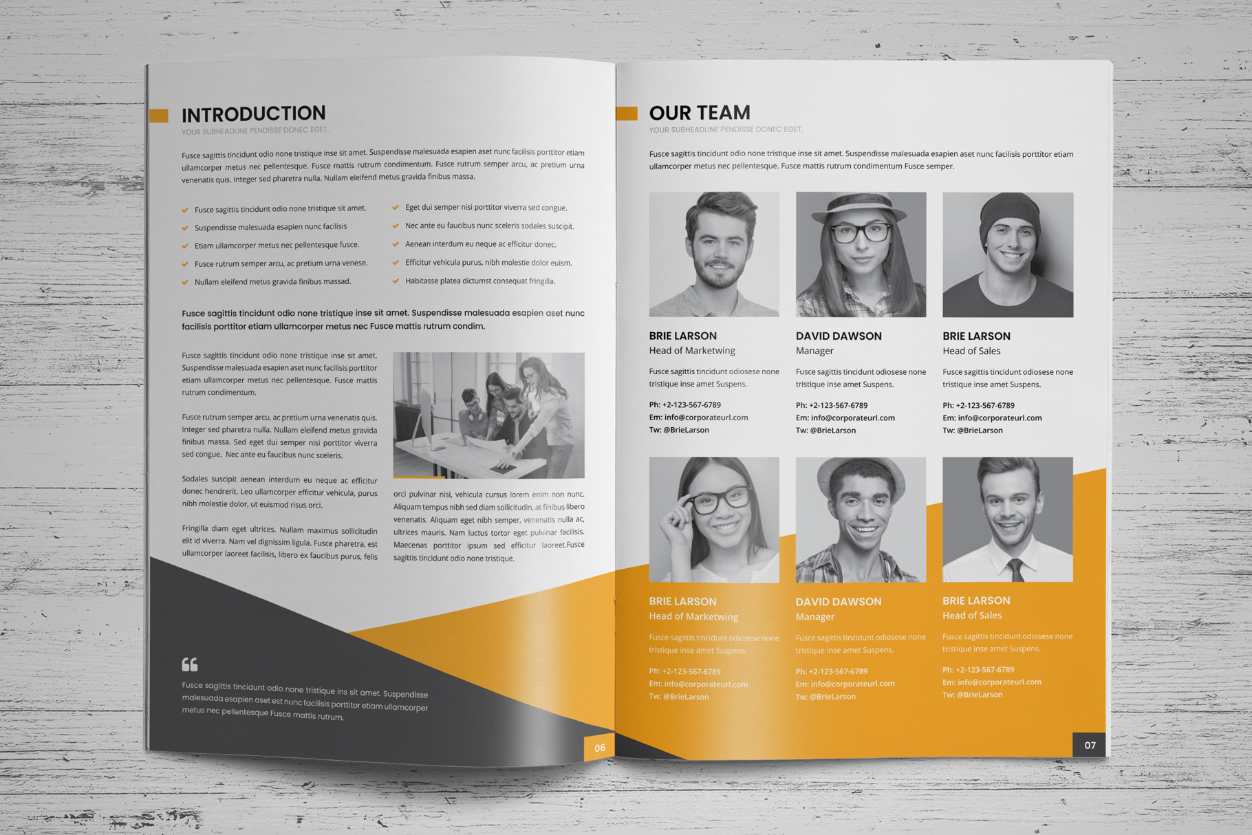 Company Profile Brochure v8 example image 4
