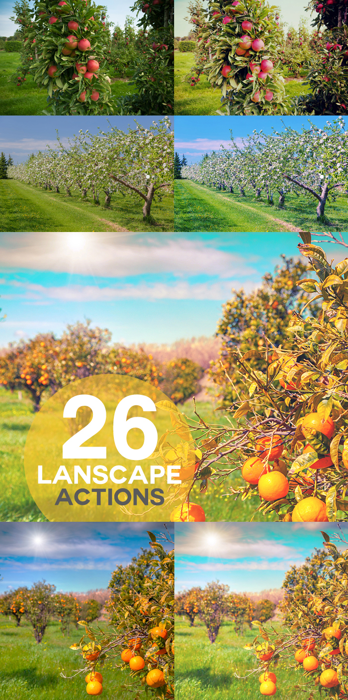 1850 Photoshop Actions example image 4