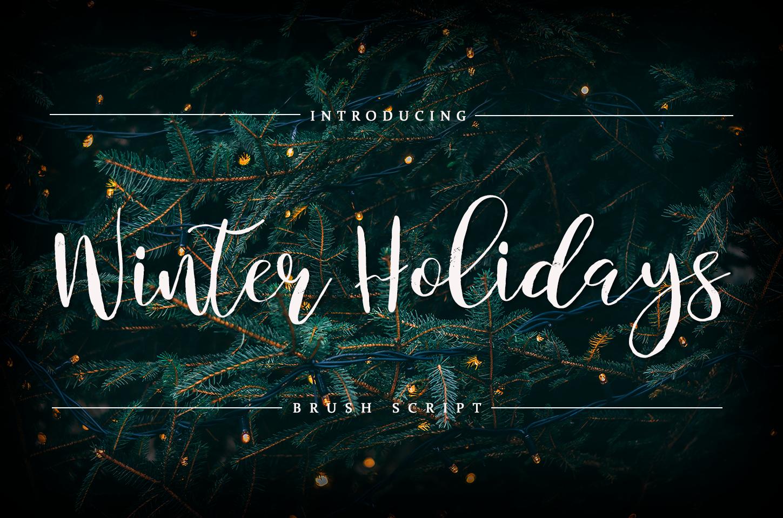 Winter Holidays - Brush Script example image 1