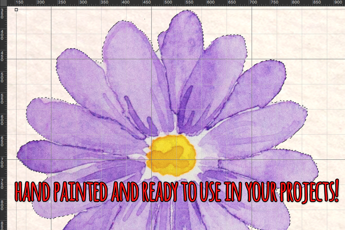 Purple Spring Daisies 32 Watercolor Elements example image 3