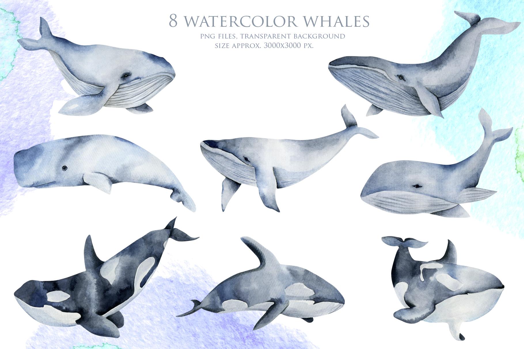 Sea life. Watercolor clip art. example image 4