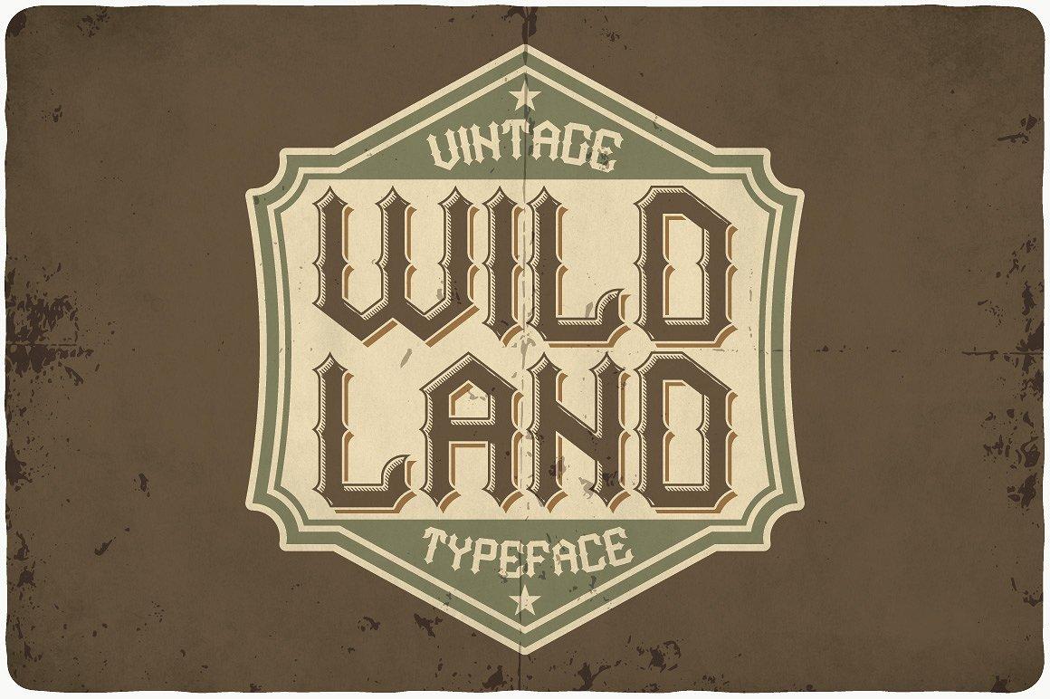 Big Bundle - 14 more fonts! example image 15