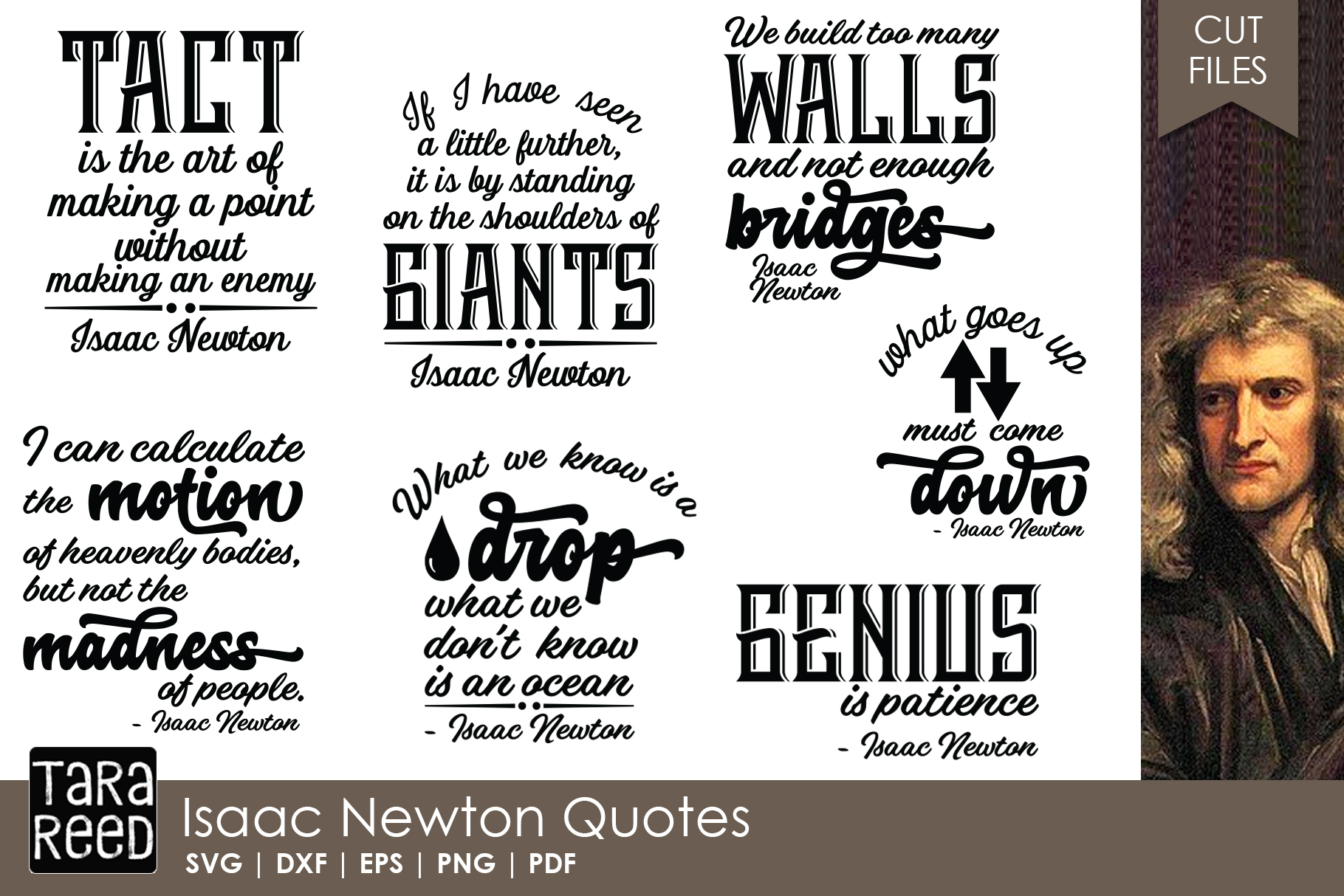 Isaac Newton Quotes - Quote SVG and Cut Files for Crafters example image 1