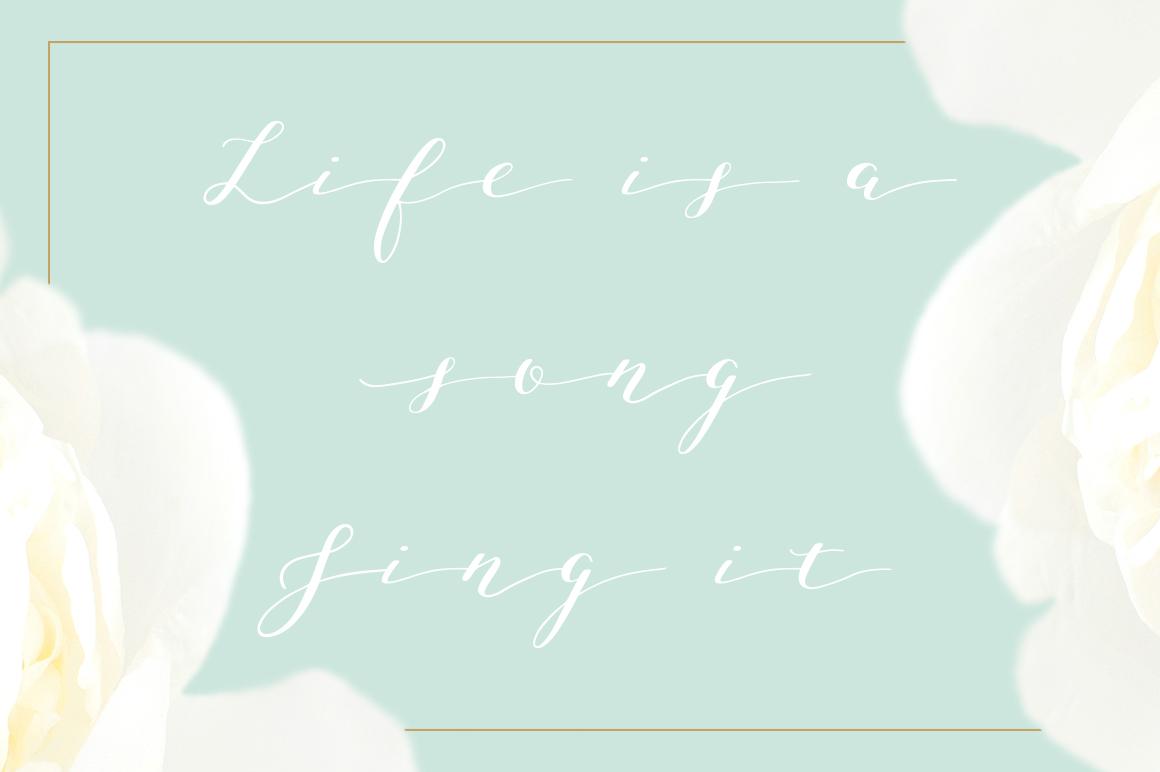 Joleni Font - modern elegant calligraphy example image 10