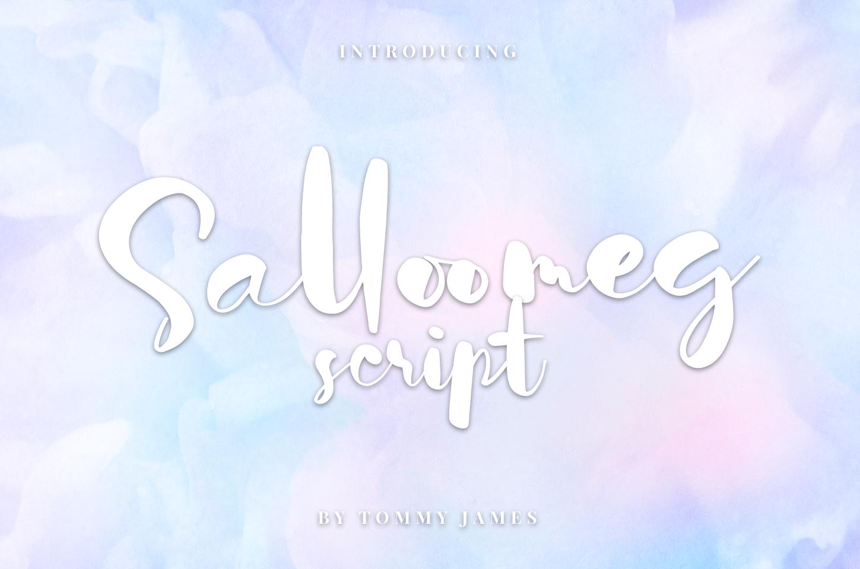 Salloomeg script example image 1