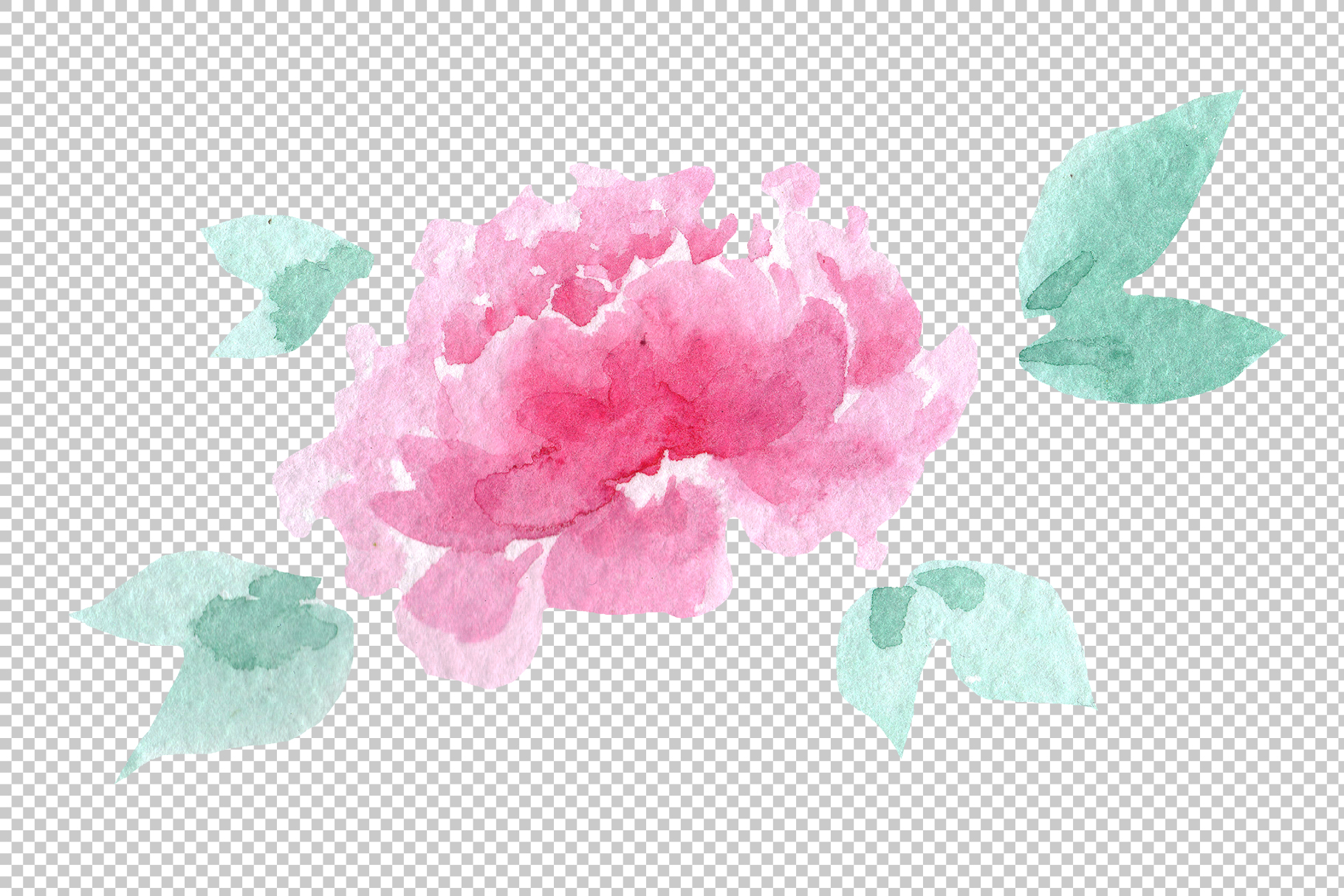 Delicate colorful peony PNG watercolor set example image 5