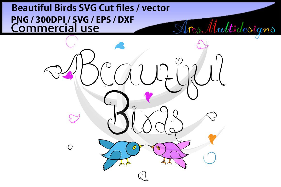 Beautiful birds SVG, EPS, Dxf, Png, Pdf, Jpg / hand drawn SVG cut file vector / Commerical & personal use example image 2