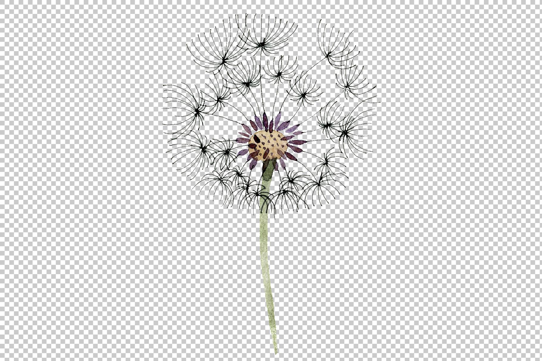 Bouquet rainbow dandelion watercolor png example image 6