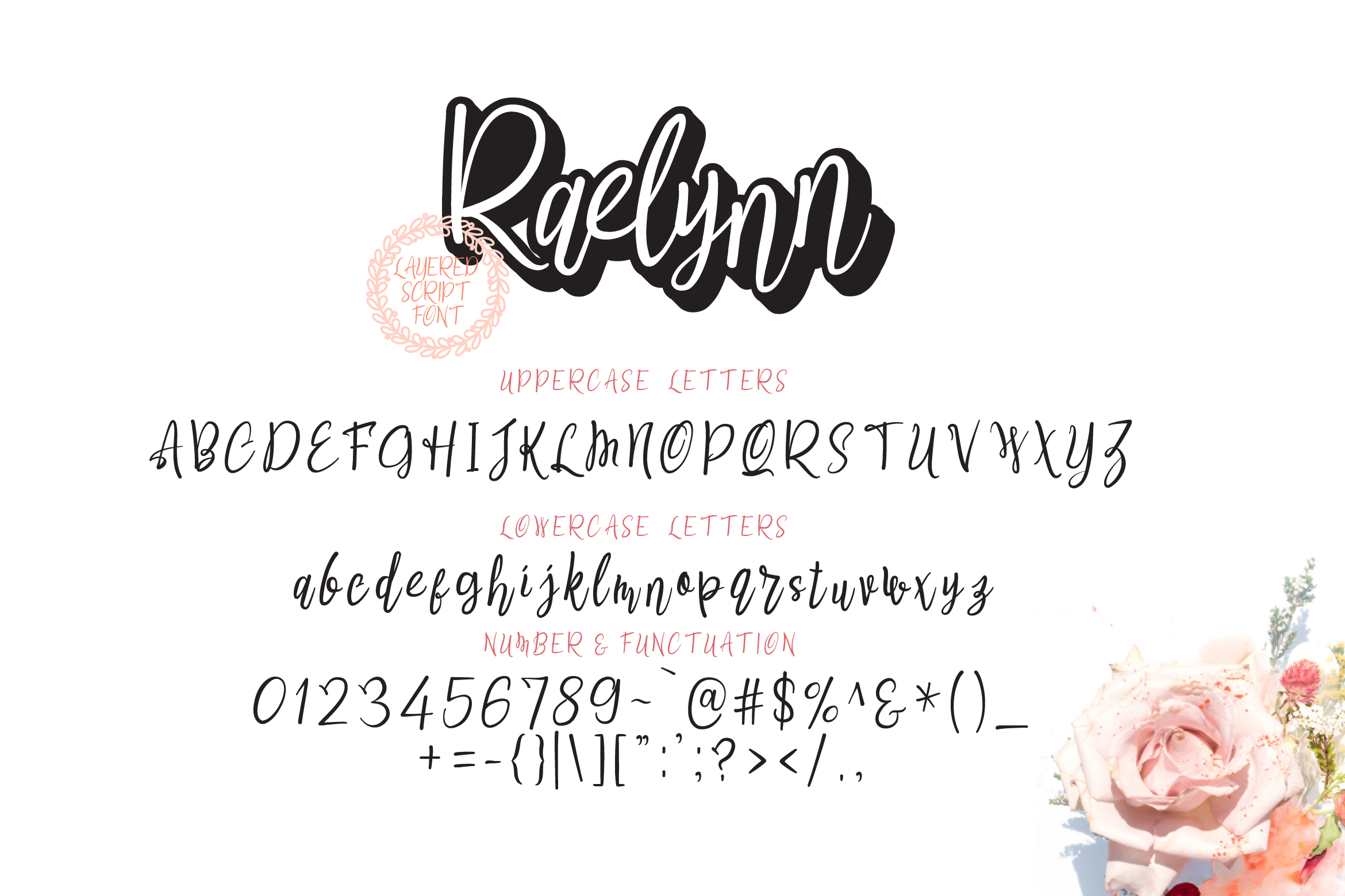 Raelynn Regular | modern script layered example image 2