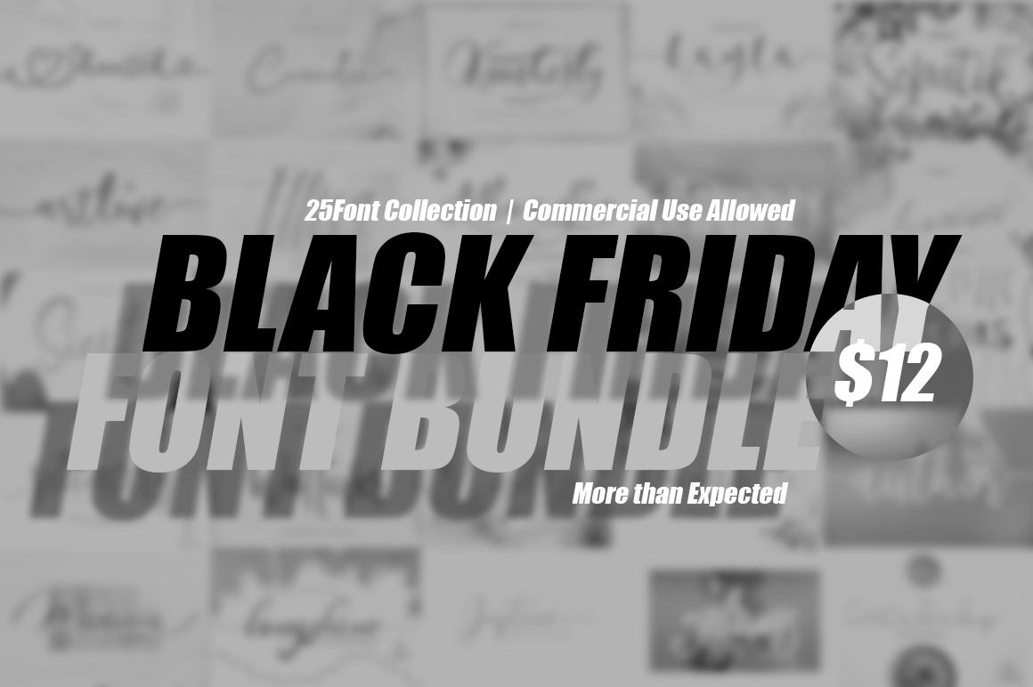 BLACK FRIDAY FONT BUNDLE $12 example image 1