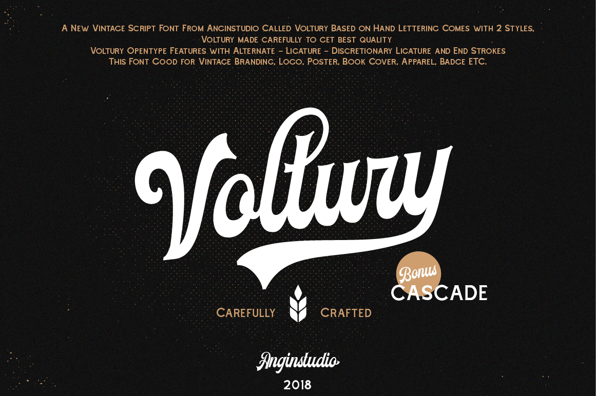 Voltury 4 fonts with extras example image 2