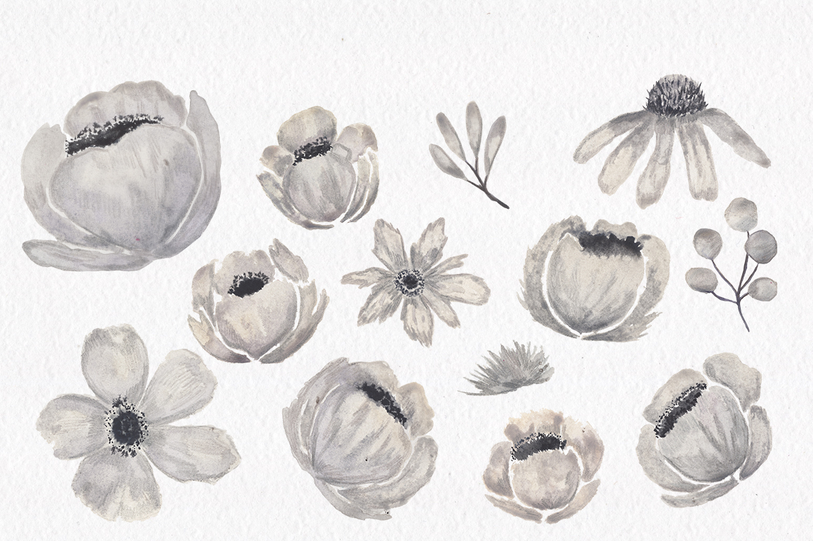 Gray and Pink Blooming. Watercolour clipart collection. example image 10